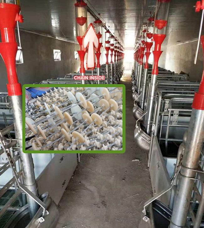 Pig farm automation feeding line planning program