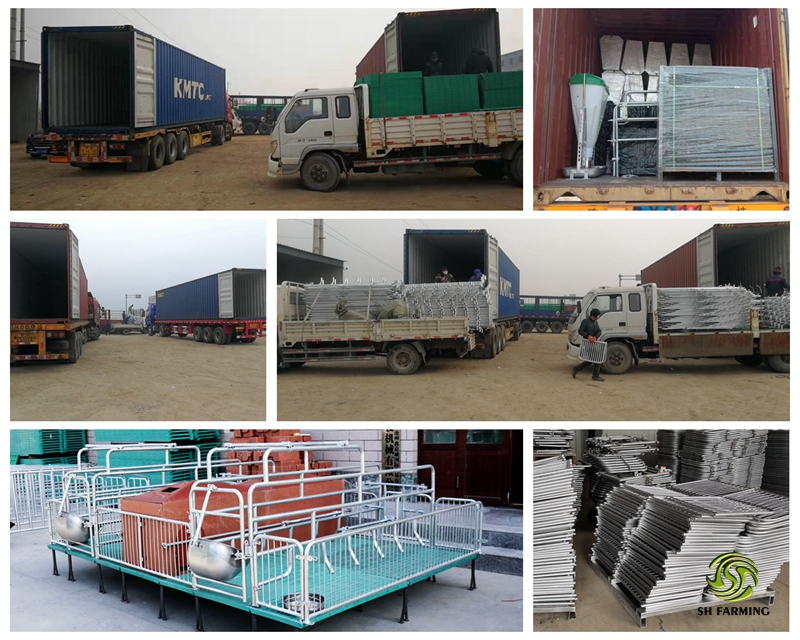 Shipping the farrowing crate to Cambodia from SH farming