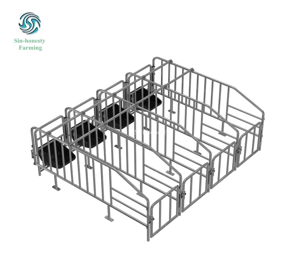 Pig Gestation stall SH002